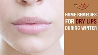 Home Remedy for Chapped Lips | Must Watch