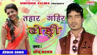 Tohar Gahir Dhodhi || Tohar Gahir Dhodhi || Sonu Sargam || 2016 super hit song
