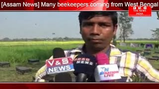 [Assam News] Many beekeepers coming from West Bengal in Assam / THE NEWS INDIA