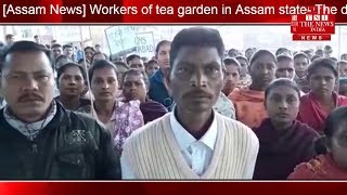 [Assam News] Workers of tea garden in Assam state- The demands of their daily wages