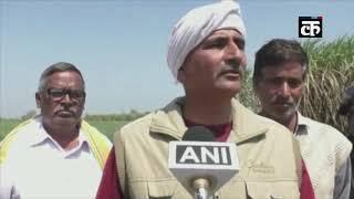 मौसम की बेरुखी के कारण यूपी के अलीगढ़ में गन्ना किसानों को करना पड़ रहा है परेशानी का सामना