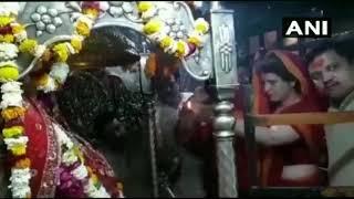CONGRESS महासचिव PRIYANKA GANDHI ने विंध्यवासिनी देवी मंदिर में की आरती