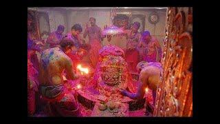 || UJJAIN Baba mahakal live holi ||उज्जैन में बाबा महाकाल के साथ फूलों और रंगो की होली।