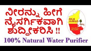 How to Clean Water Naturally at home in Kannada | Best Natural Water Purifier | Kannada Sanjeevani