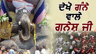 Ganesh Chaturthi पर बनाई गई Sugarcane Ganesh की मूर्ति, नहीं होगा विसर्जन