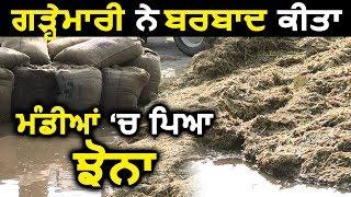 Amritsar: Heavy Rain और Hailstorm ने खोली Captain सरकार के दावों की पोल