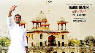 LIVE- Congress President Rahul Gandhi addresses a gathering in Yamunanagar, Haryana