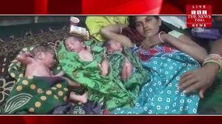[ Rajasthan ] राजस्थान में महिला ने 3 नवजात शिशुओं को एक साथ दिया जन्म / THE NEWS INDIA