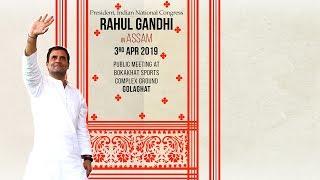 LIVE- Congress President Rahul Gandhi addresses public meeting in Golaghat, Assam