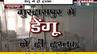 Dengue In Gurdaspur 1 Positive Dengue Patient found