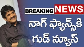 నాగార్జున ఫ్యాన్స్ కి గుడ్ న్యూస్  | Super Good News For Akkineni Nagarjuna Fans | Top Telugu TV