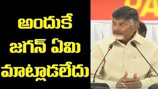Nara Chandrababu Naidu about YS Jagan | AP Elections 2019 | Top Telugu TV