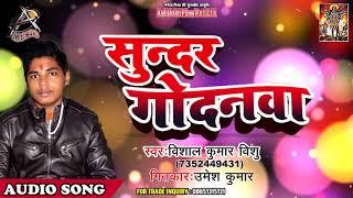 Vishal Kumar Vishu का सबसे मस्त (SONG 2019) - Sundar Godanwa  - Bhojpuri Hit Songs 2019