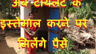 DB LIVE | 31 Jan  2017 | Use toilet and earn Rs 2,500 per month