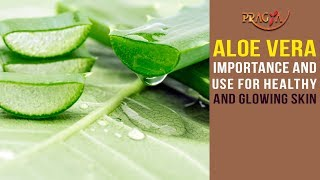 Watch Aloe Vera Importance and Use for Healthy and Glowing Skin