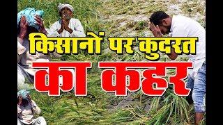 किसानो पर कुदरत का कहर | Rajasthan में 'काल' बनकर आया तूफान !  DPK EXCLUSIVE