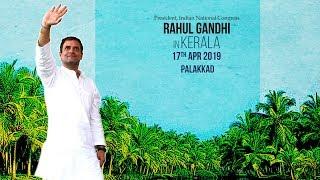 LIVE: Congress President Rahul Gandhi addresses public meeting in Palakkad, Kerala