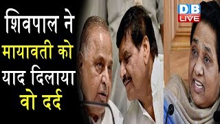 गेस्टहाउस कांड पर बोले Shivpal Singh Yadav | Mayawati का भी हो नार्को टेस्ट-Shivpal  |#DBLIVE