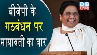 'BSP-SP से डरकर गठबंधन कर रही है बीजेपी'   Mayawati latest news today news in hindi  Bjp latest news