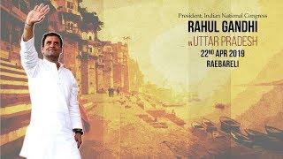 LIVE: Congress President Rahul Gandhi addresses public meeting in Raebareli, Uttar Pradesh.