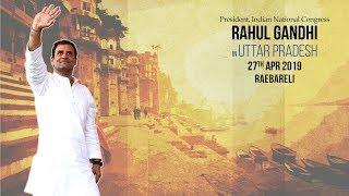 LIVE: Congress President Rahul Gandhi addresses public meeting in Raebareli, Uttar Pradesh
