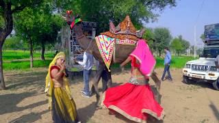 डी जे वाला गानो लगा शादी को | Dj Wala Gano Laga Sadi  Ko | Bhawar Khatana | Vid Evolution Rajasthani
