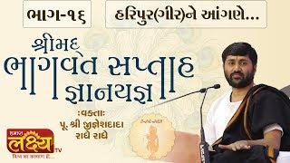 શ્રીમદ્દ ભાગવત સપ્તાહ જ્ઞાનયજ્ઞ    Pu. Jigneshdada (Radhe Radhe)    Haripur(Gir)    Part-16