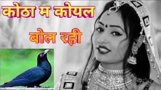 कोठा म कोयल बोल रही//Dj rasiya //Singer Balli Bhalpur