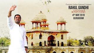 LIVE: Congress President Rahul Gandhi addresses public meeting in Gurugram, Haryana