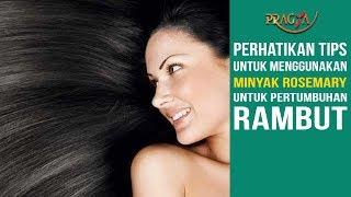 Perhatikan Tips Untuk Menggunakan Minyak Rosemary Untuk Pertumbuhan Rambut