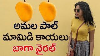 అమల పాల్ మామిడి కాయలు | Actress Amala Paul Tweet Goes in Wrong Way | Latest News | Top Telugu TV