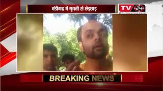 चंडीगढ़ में युवती से छेड़छाड़ report by ramesh kumar