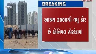 Rajkot:People sit on protest for the demand of facilities for cattle residing in Animal Hospital