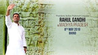 LIVE: Congress President Rahul Gandhi addresses public meeting in Bhind, Madhya Pradesh
