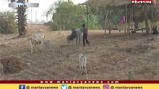 Dahodના અંતરિયાળ વિસ્તારમાં પાણીની સમસ્યા - Mantavya News