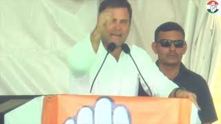 Congress President Rahul Gandhi addresses public meeting in Bhind, Madhya Pradesh