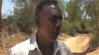 Mahisagar | Water scarcity surge | ABTAK MEDIA