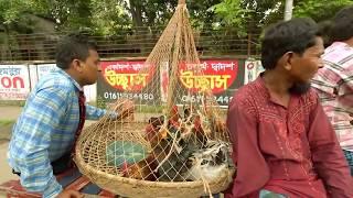 Bangla natok telefilm 2018 - Jege Otar Golpo , Parthiv Express