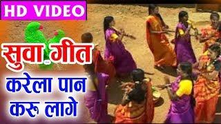 Karela Paan Karu Laage   Cg suwa Geet   Sajal   Shraddha   Chaaru   Tanu   Chhattisgarhi suwa Geet