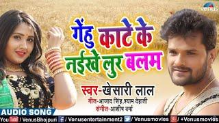 khesari lal का नया गाना गेंहू काटे के नइखे लुर बलम।Khesari lal yadav New Chaita Song।Bhojpuri News।