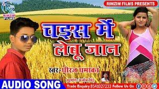 चइत में लेबू जान - chaita me lebu jaan - घाम लागी त छत्ता ओढाइब - Latest Bhojpuri Chait Video 2019