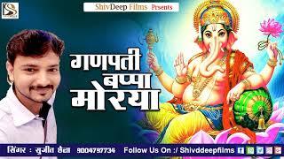 Ganpati Bappa Morya || Brash Wadi Cha Raja || Latest Ganpati Dj Song 2017 || Sujit Chhaila