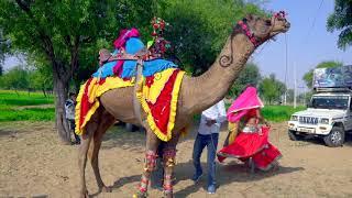 New Superhit DJ Rajasthani Gurjar Rasiya | Meri Edi Ki Dhamak | Balli Gurjar Rasiya