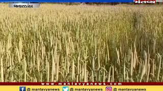 Banaskantha: નર્મદાના નીરથી ખેડૂતોમાં ખુશી - Mantavya News