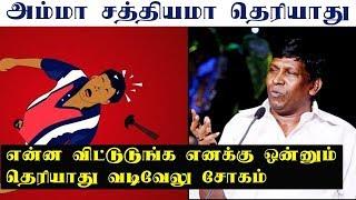Vadivelu talk about Nesamani trending   Vadivelu latest interview