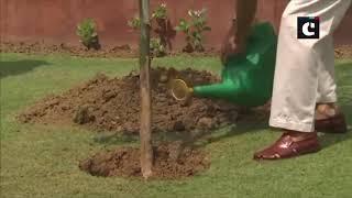 EAM S Jaishankar plants sapling on World Environment Day