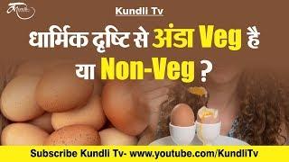 धार्मिक दृष्टि से अंडा veg है या non-veg ? Egg veg hai ya non veg in hindi
