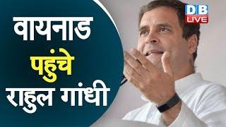 वायनाड पहुंचे  Rahul Gandhi | राहुल ने लोगों का दिया धन्यवाद | Rahul gandhi In Wayanad |#DBLIVE