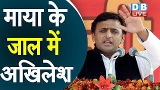 Mayawati के जाल में Akhilesh Yadav | 2022 के लिए Mayawati की बड़ी रणनीति |#DBLIVE