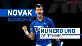 Novak Djokovic's bumpy ride to success